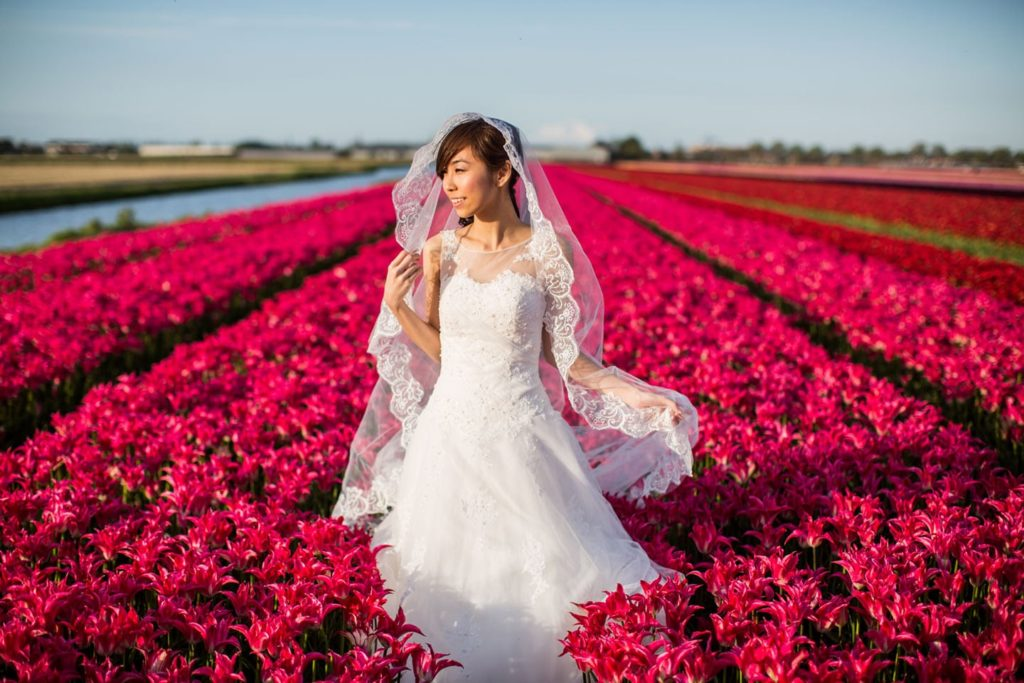 Prewedding tulip fields Netherlands